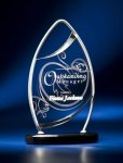 Pinnacle Satin Wired Clear Acrylic Award Achievement Awards