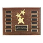 Perpetual Star Plaque Employee Awards