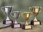 Trophy Cups with Piano Finish Wood Base Sales Awards